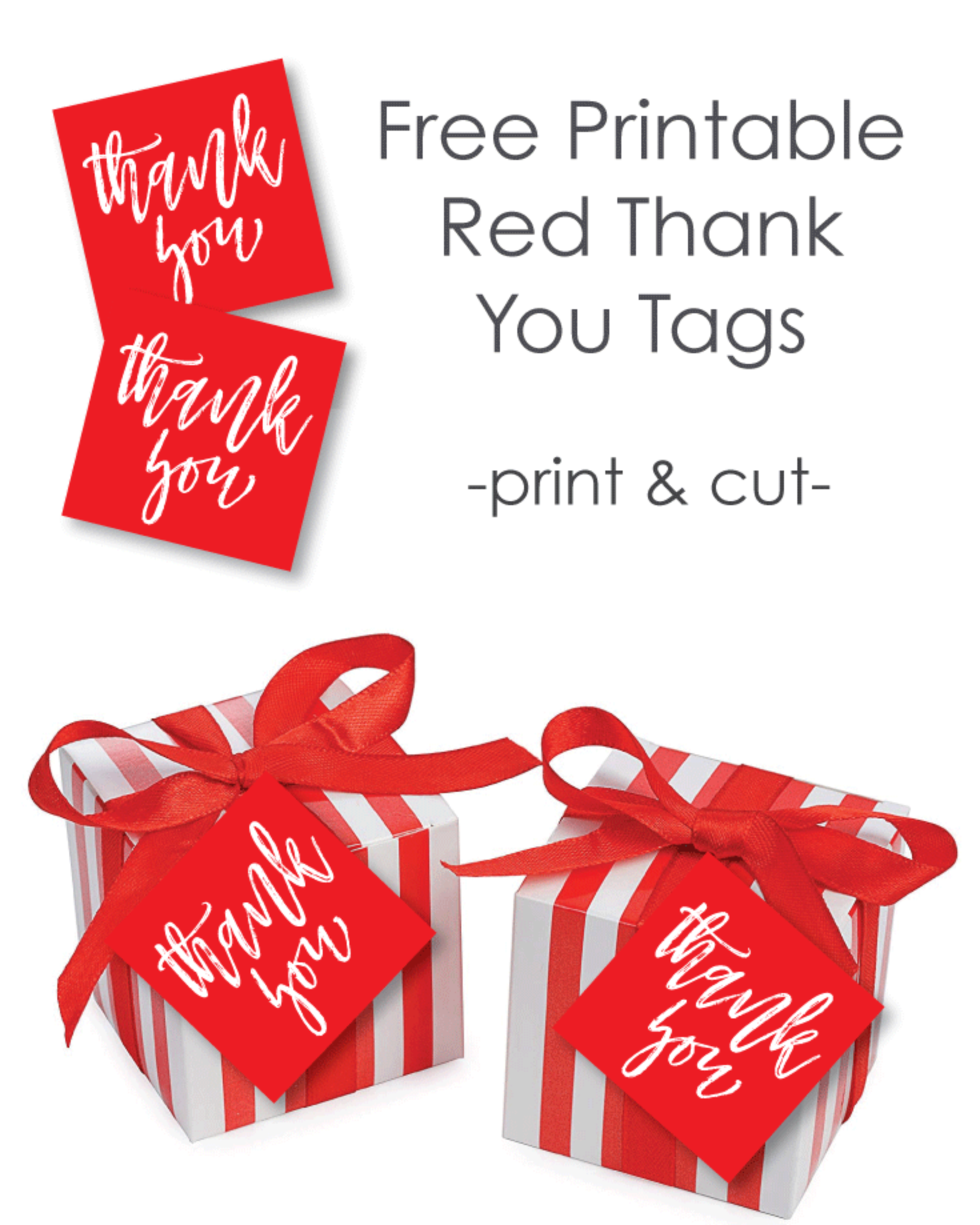 photo relating to Thank You Gift Tags Printable titled Free of charge Printable Crimson Like And Reward Tags - Print It Boy or girl